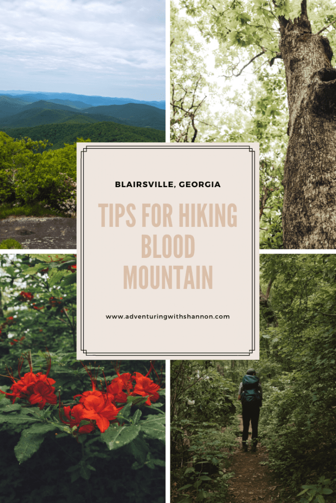Blood Mountain is easily one of my favorite hikes in Georgia. Located in Blairsville, Georgia (near Helen, Georgia), this is the highest peak on the Georgia section of the Appalachian trail.  #appalachiantrail #AT #HIKING #georgia #georgiahikes #atlanta #atlantahikes #helen #blairsville #bloodmountain
